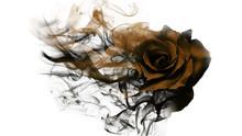 Smoke Rose From