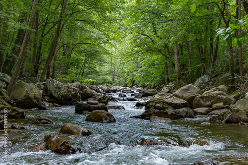 Photo Looking from the center of a stream with large boulders in a forest