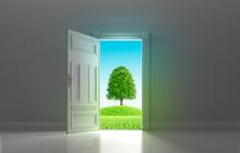 Tür Mit Blick Auf Baum Und Gr...