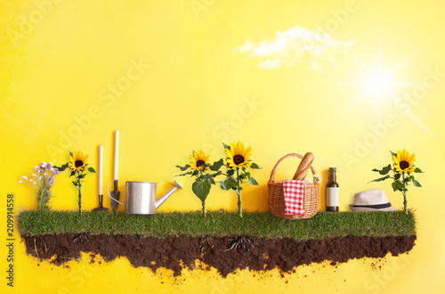 Fototapeta  Summer picnic background