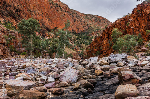 Spoed Foto op Canvas Diepbruine Ormiston Gorge, West MacDonnell National Park, Australia
