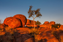 Devils Marbles At Sunset. Northern Territory, Australia