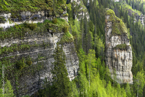 Fotografie, Obraz  landscape with sheer cliffs amid the forest without sky (rock Devil's finger on