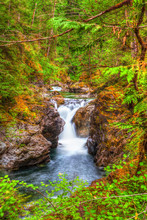 Little Qualicum Falls On Vanco...