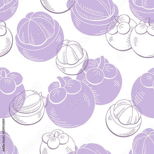 Mangostanu owocowego graficznego koloru tła nakreślenia ilustraci bezszwowy deseniowy wektor