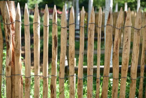 Fotografie, Obraz  Palissade de jardin en bois
