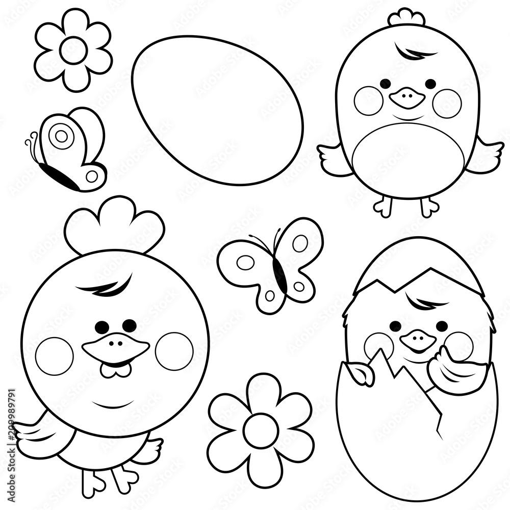 Ładny kurczak i jajka. Czarno-biała książeczka do kolorowania <span>plik: #209989791   autor: stockakia</span>