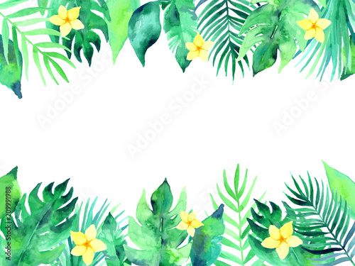 Summer tropical background illustration