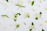 Jasmine flowers pattern top view, flat lay.