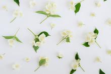 Jasmine Flowers Pattern Top Vi...