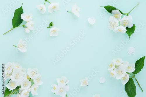 Valokuvatapetti Jasmine flowers pattern top view, flat lay.