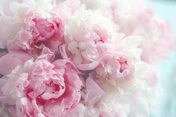 Fototapeta Popularne Fluffy pink peonies flowers background