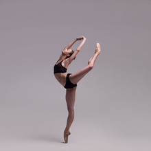 Beautiful Ballet Dancer Isolated
