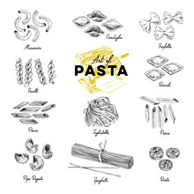 Beautiful Vector Hand Drawn Pasta Illustration.
