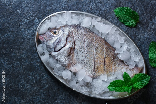 Fotografie, Obraz  Fresh raw fish Porgy still life overhead view