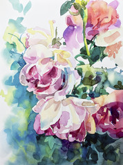Panel Szklany Malarstwo original watercolor painting of abstract roses