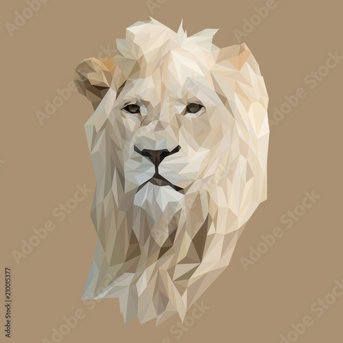 Lion low poly design. Triangle vector illustration. фототапет