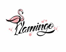 Flamingo. Lettering. Stylish I...