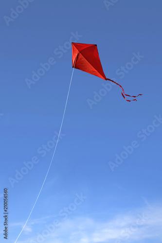 Red kite in the sky Wallpaper Mural