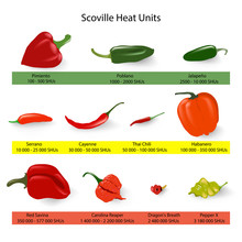 Scoville Scale Of Chilli Peppers Spiciness, Vector