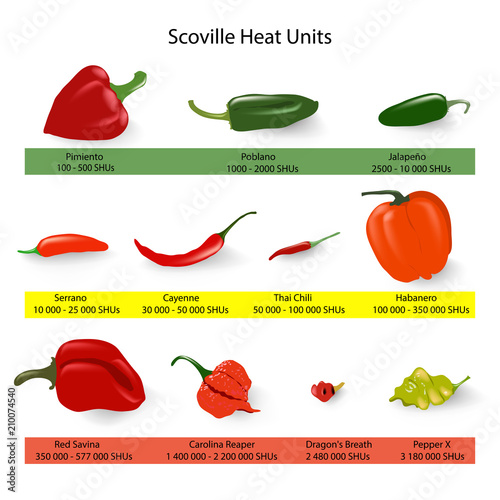 Cuadros en Lienzo Scoville scale of chilli peppers spiciness, vector