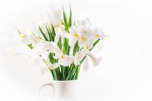 Beautiful White Iris Flowers I...