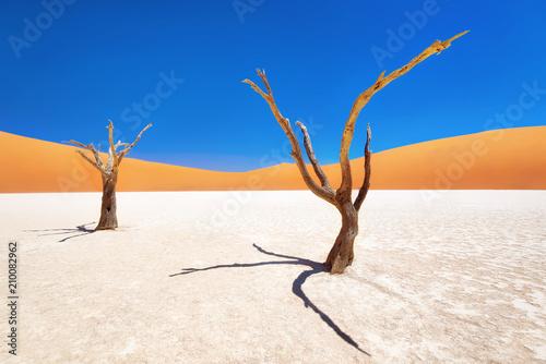 dead-vlei-w-parku-narodowym-naukluft-w-namibii-wykonane-w-styczniu-2018-r