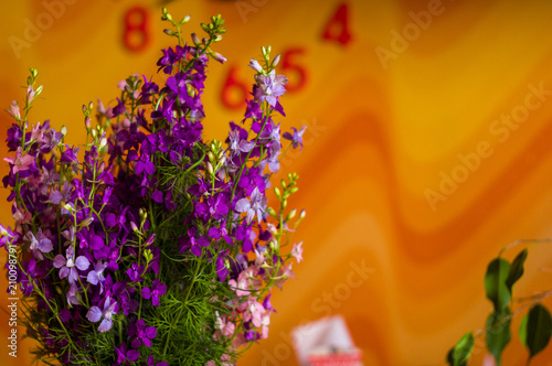 A Bouquet Of Bright Spring Flowers Of Various Types Buy This Stock