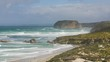 Seals at the coastal landscape of the Flinder's Chase National Park
