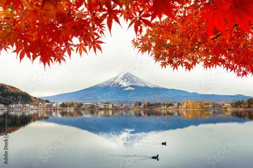 Wall Murals Photo of the day Autumn Season and Fuji mountain at Kawaguchiko lake, Japan.