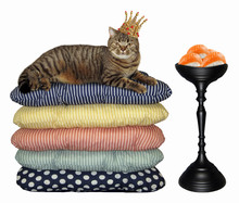 The In The Gold Crown Cat  Lies On Pile Of Pillows Near A Bowl Of Sushi. White Background.