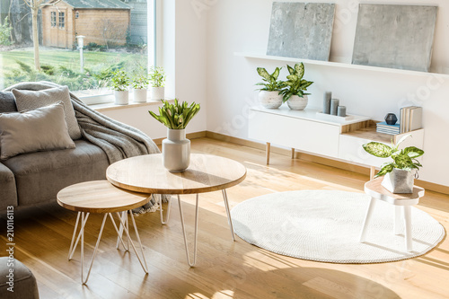Fresh Plants And Flowers Placed In Bright Living Room Interior With Amazing Bright Living Room Interior