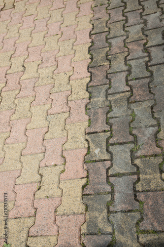Fotografie, Obraz  garden paved path that was half clean and dirty after an anti-foam cleaning