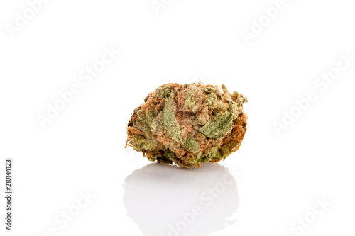 Marijuana bud isolated on white background. Canvas Print