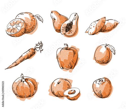 Fotografia Assortment of orange foods, fruit and vegtables, vector sketch