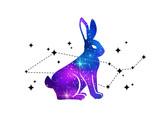 Fototapeta Dinusie - Rabbit and constellation of Cetus