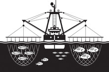 Trawler Ship Catch Fishes In T...