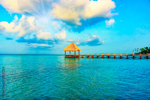 Foto op Plexiglas Caraïben caribbean beach arbor palm roof path to the sea