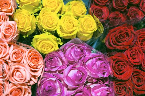 Papiers peints Cactus Bunches of multiclored roses. Fresh flower background. Florist service. Wholesale flower shop. Flower storage. Top view