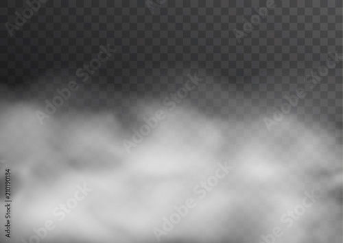 Garden Poster Smoke Vector realistic smoke, fog or mist transparent effect isolated on dark background