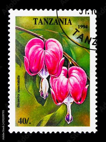 Poster  Dicentra spectabilis, Tropical Flowers serie, circa 1994