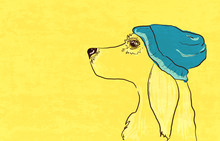 Dog In The Blue Hat