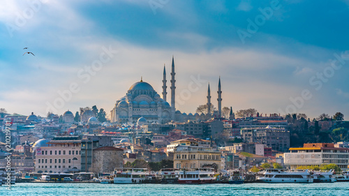 Photo  Blue Mosque, Building And Sea View