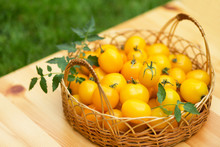 A Group Of Ripe Red And Yellow Cherry Tomatoes
