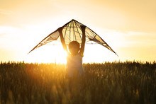 Cute Little Girl With Kite In Field