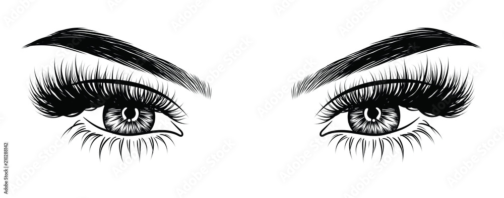 Fototapeta Hand-drawn woman's sexy makeup look with perfectly perfectly shaped eyebrows and extra full lashes. Idea for business visit card, typography vector. Perfect salon look