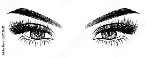 Canvas Print Hand-drawn woman's sexy makeup look with perfectly perfectly shaped eyebrows and extra full lashes