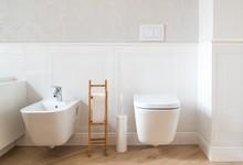 White Ceramic Toilet And Bidet