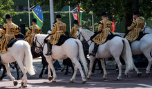 Mounted Band Riding White Hors...
