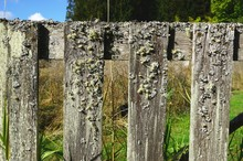 Weathered Wooden Fence Boards ...
